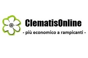 ClematisOnline Italia