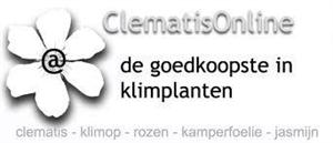 ClematisOnline.be