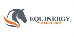 Equinergy