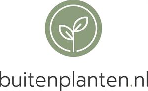 Buitenplanten.nl