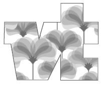 VT Mode